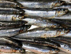 Easy Follow Mediterranean Diet - fish